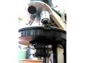 microscopie8_8